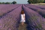 hipoalergiczni_sposoby_a_zdrowie_ziolowe_napary_na_alergie