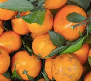 hipoalergiczni-odkwaszanie-mandarynki