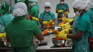 hipoalergiczni-przygotowanie-papai