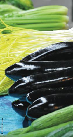 hipoalergiczni-dr-voll-warzywa