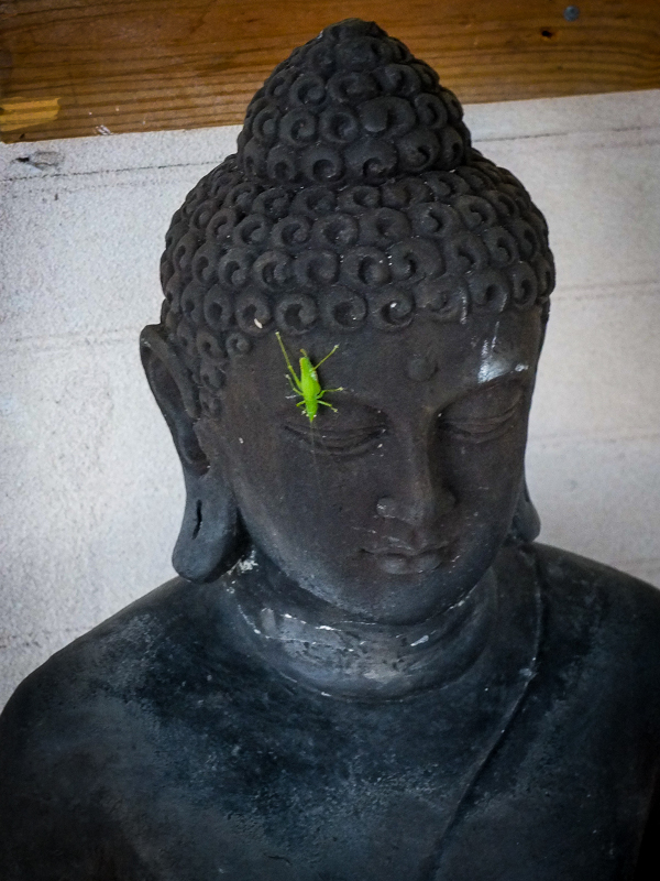 hipoalergiczni-mindfulness-figurka