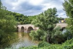 Hipoalergiczni-Hildegarda-Most