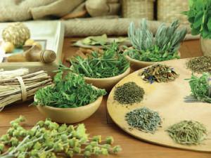 hipoalergiczni-tarczyca-zioła