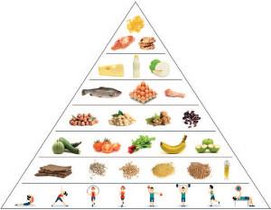 piramida żywienia wg uniwersytetu Harvarda