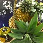 hipoalergiczni-happy-evolution-2018-targi-Organic-and-Natural-Dubaj-floor-plan-ananasy