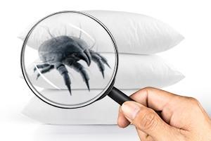 hipoalergiczni-fot.Allergoff-pillow