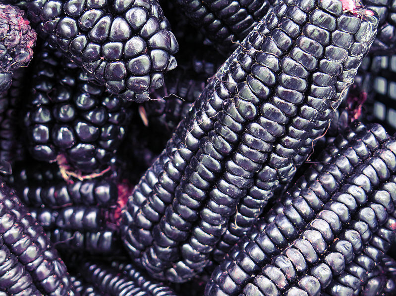 40669328 - pile of peruvian purple corn background