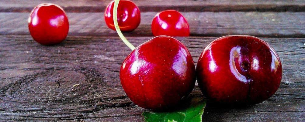 hipoalergiczni-cherry-tree-justyna-piotr-muzyka-owoce