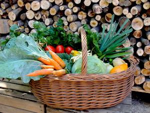 Ogród-szambala-dom-alergika-hipoalergiczni-foto-online