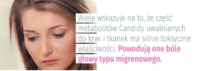 hipoalergiczni-candida-Mirosław-Mastej-7