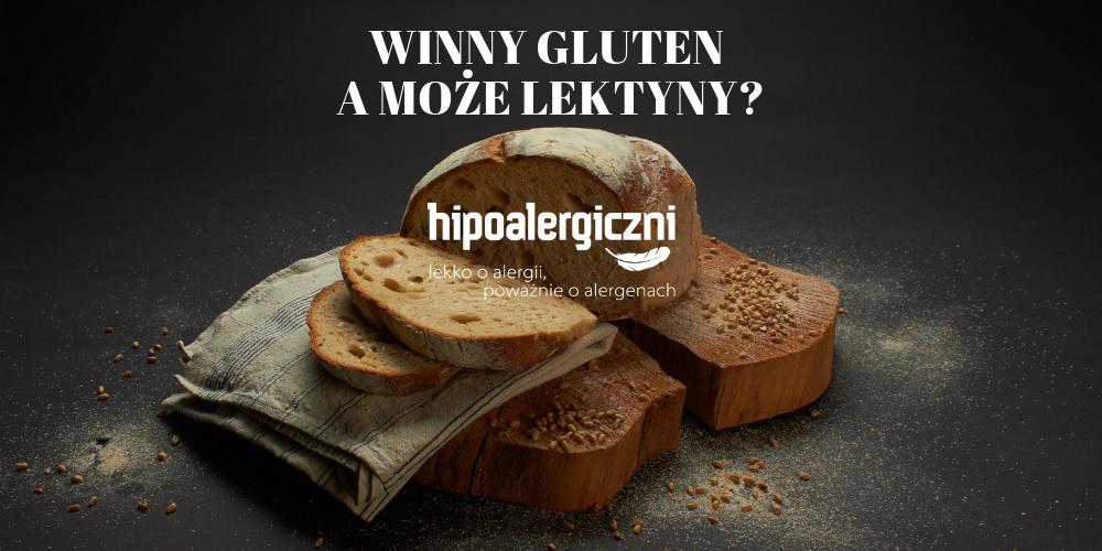 okładka gluten czy lektyny