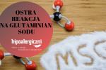 okładka msg glutaminian sodu Hipoalergiczni
