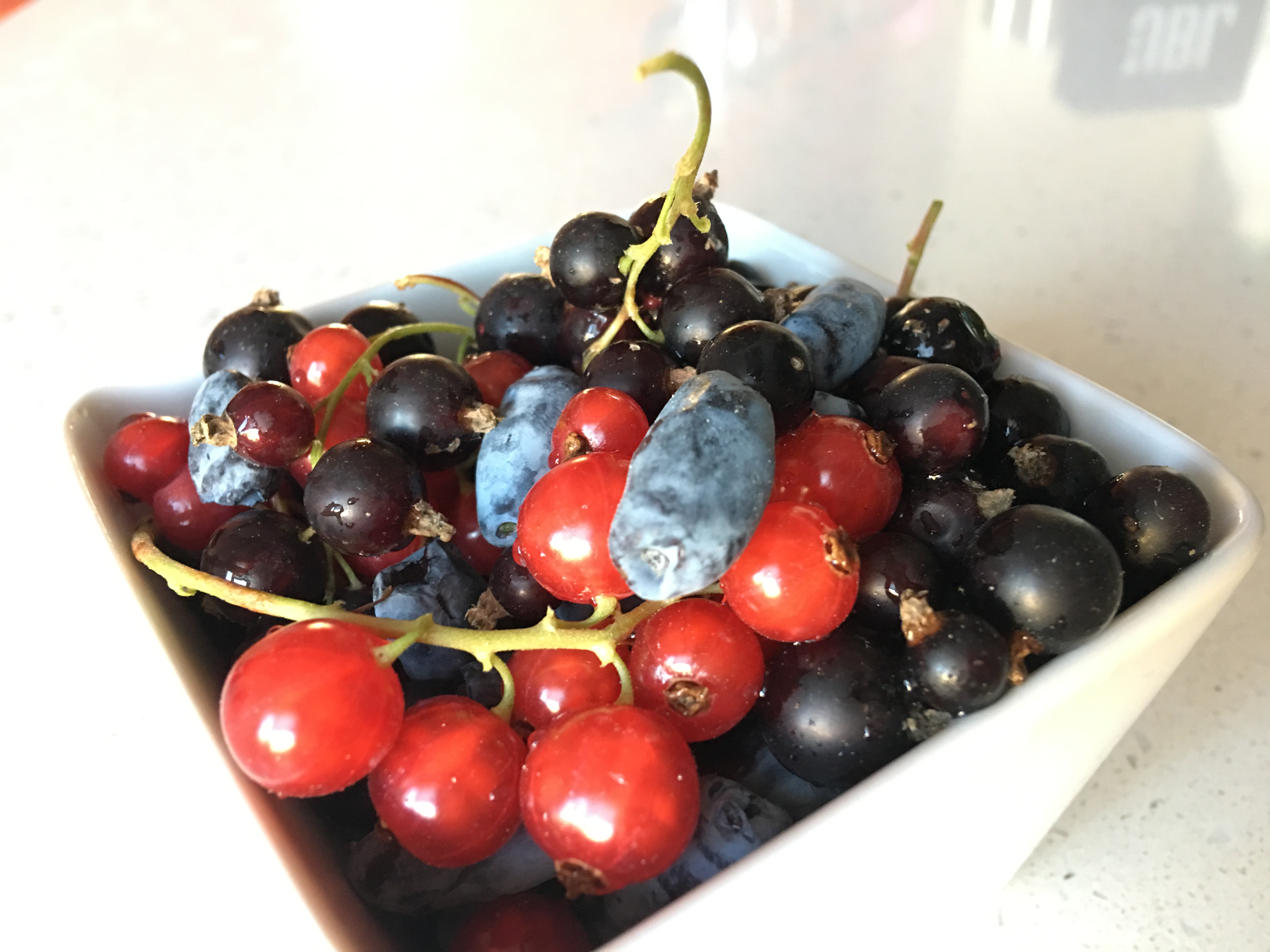 hipoalergiczni-polskie-super-owoce-porzeczki