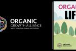 hipoalergiczni-organiczne-zycie-baner-zaneta-geltz