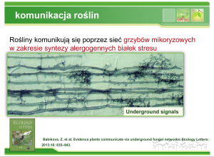 hipoalergiczni-V-Forum-Alergii-Zaneta-Geltz-glifosat-27