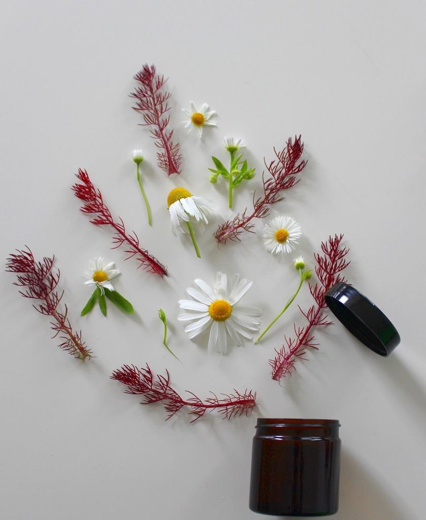 medicinal-flower-Natura-Siberica-kosmetyk-hipoalergiczni