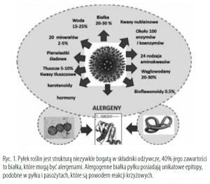 hipoalergiczni-pylek-roslin-sklad