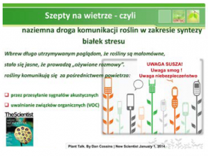 hipoalergiczni-szepty-na-wietrze