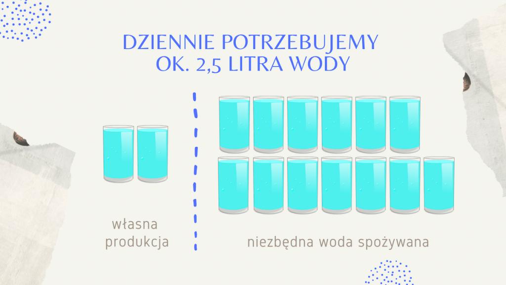 Ile wody dziennie potrzebujesz? - Hipoalergiczni